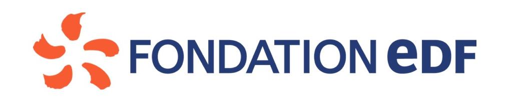 Fondation edf - solidarité et progrès