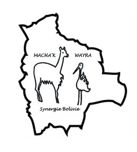 logo association Macha'K Wayra, synergie Bolivie