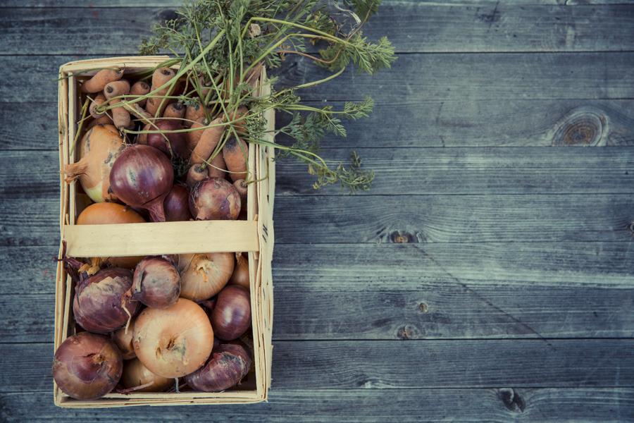 Rencontre Solidaire: Pratiques et actions collectives pour une agriculture durable