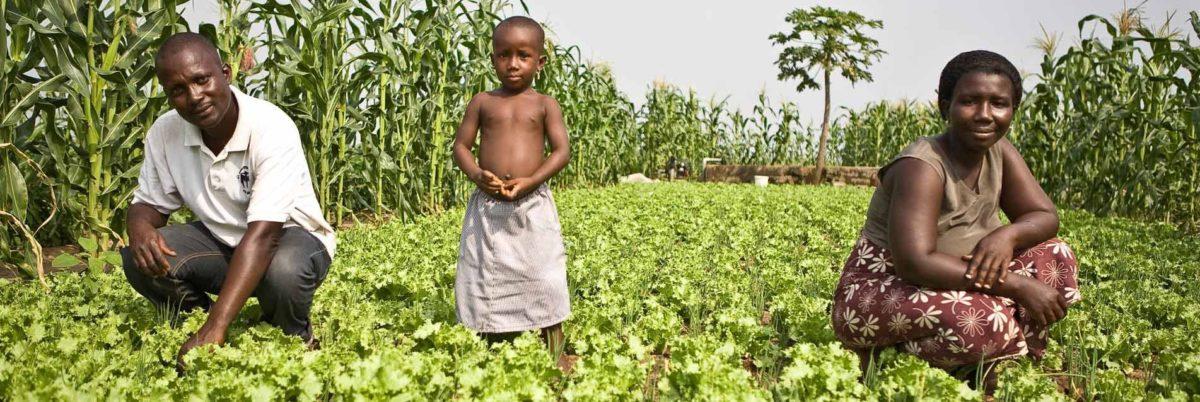 APPEL À PROJETS : « Promotion de l'agriculture familiale en Afrique de l'Ouest »